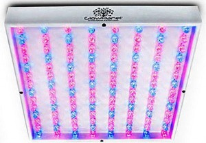 hydroponic marijuana led grow light
